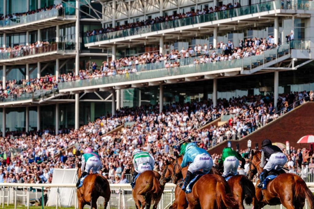 Cheltenham Festival: A guide to betting on horses